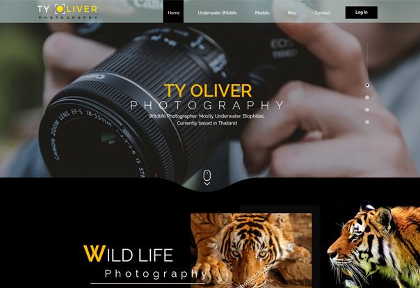 Web Design Portfolio 14